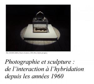 Alex QUOI 13 avril 2016_Entre sculpture et photographie-1